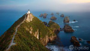 Dunedin Vacation Travel Guide   Expedia
